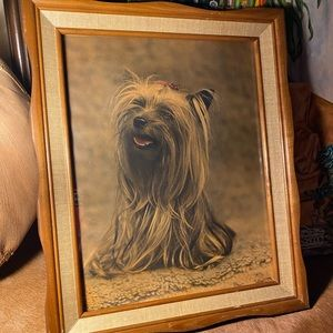 vintage yorkie yorkshire terrier picture